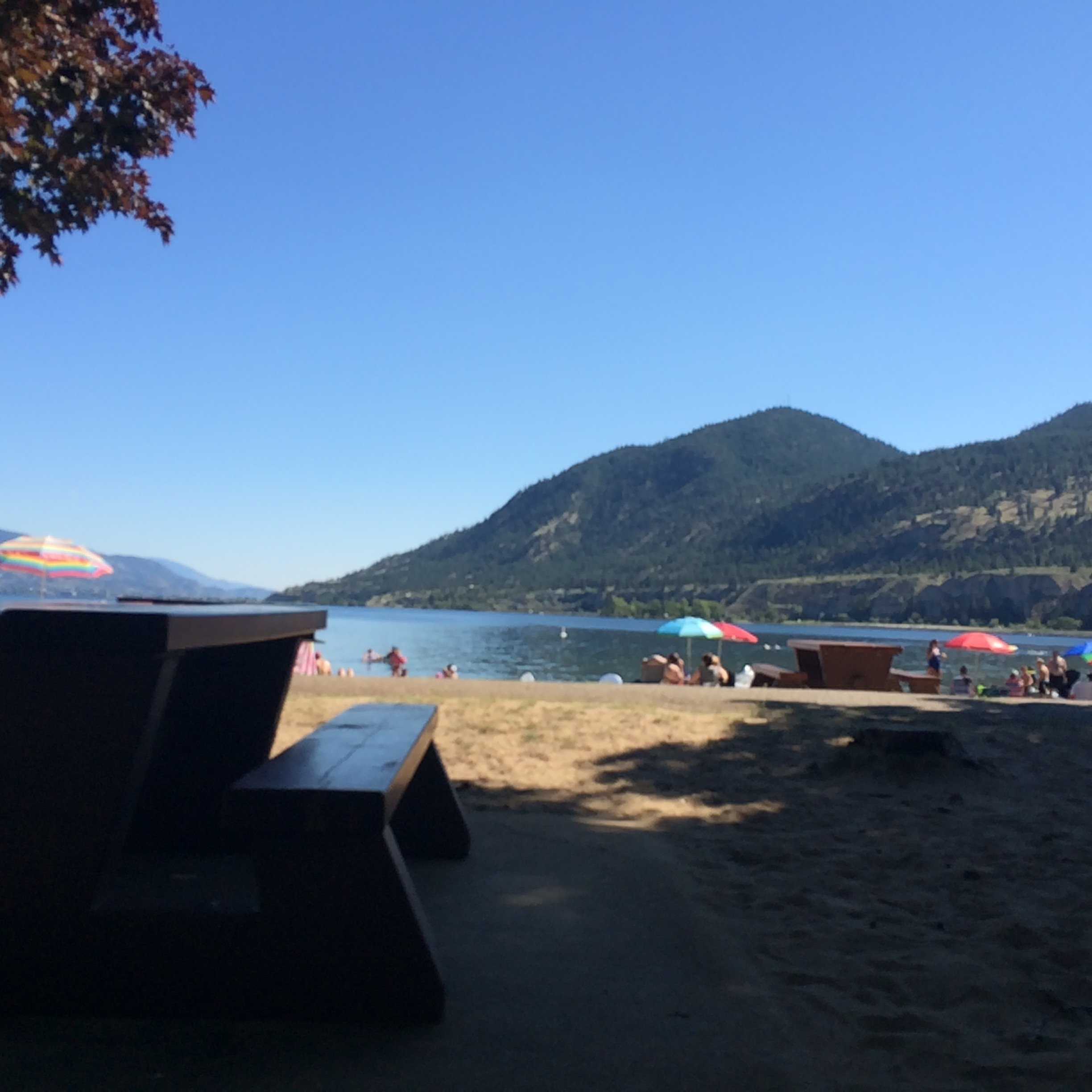 Summertime boredom sucks, no matter where you are! Click here to find out how to break the spell in the Okanagan!