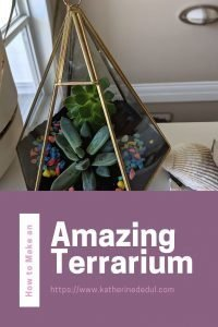terrariums make a great diy project, check out my tips to make yours today!