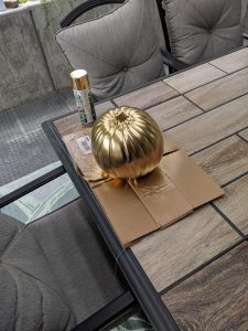 To gold a pumpkin, some metallic spray paint is needed