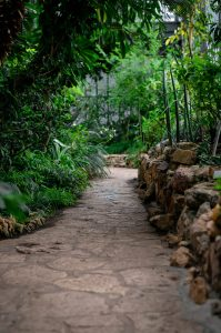 A nice pathway can really add to your gardenscape!